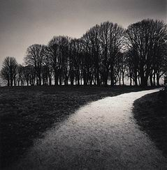 moonlit_path